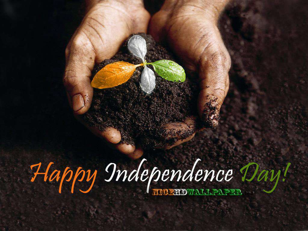 15 August Independence Day Hd Wallpaper: 15th August 1947 Independence Day Of India Hd 2012 : Hd