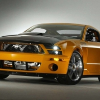 2005 Mustang Gtr Hd Wallpapers