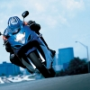 Download 2008 suzuki gsx 650f action wallpapers, 2008 suzuki gsx 650f action wallpapers Free Wallpaper download for Desktop, PC, Laptop. 2008 suzuki gsx 650f action wallpapers HD Wallpapers, High Definition Quality Wallpapers of 2008 suzuki gsx 650f action wallpapers.