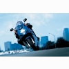 2008 Suzuki Gsx 650f Action Wallpapers