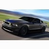 2010 Ford Mustang At Sema 2009 2 Hd Wallpapers