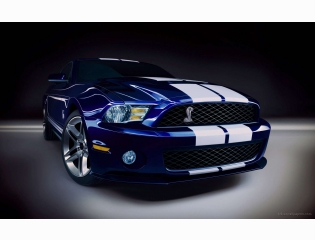2010 Shelby Gt500 2 Hd Wallpapers