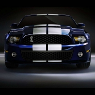 2010 Shelby Gt500 4 Hd Wallpapers