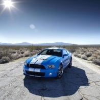 2010 Shelby Gt500 Hd Wallpapers