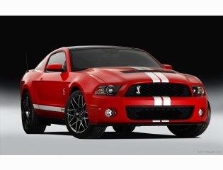 2011 Ford Shelby Gt500 4 Hd Wallpapers