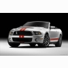 2011 Ford Shelby Gt500 Hd Wallpapers