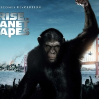 2011 Rise Of The Planet Of The Apes Wallpapers