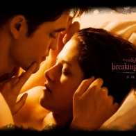 2011 Twilight Saga Breaking Dawn Part1 Wallpapers