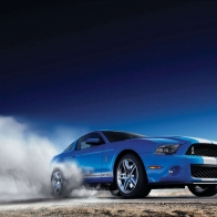 2012 Ford Shelby Gt500 2 Hd Wallpapers
