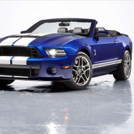 2013 Ford Shelby Mustang Gt500 Convertible Hd Wallpapers