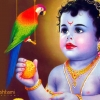 Download     krishna janmashtami wallpaper,     krishna janmashtami wallpaper  Wallpaper download for Desktop, PC, Laptop.     krishna janmashtami wallpaper HD Wallpapers, High Definition Quality Wallpapers of     krishna janmashtami wallpaper.