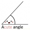 Download a cute angle cover, a cute angle cover  Wallpaper download for Desktop, PC, Laptop. a cute angle cover HD Wallpapers, High Definition Quality Wallpapers of a cute angle cover.