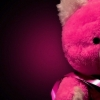 Download a teddy bear, a teddy bear  Wallpaper download for Desktop, PC, Laptop. a teddy bear HD Wallpapers, High Definition Quality Wallpapers of a teddy bear.