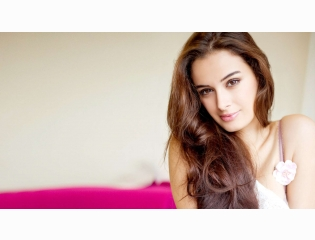 Actress Evelyn Sharma