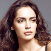 actress shazahn padamsee, actress shazahn padamsee  Wallpaper download for Desktop, PC, Laptop. actress shazahn padamsee HD Wallpapers, High Definition Quality Wallpapers of actress shazahn padamsee.