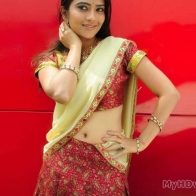 Aditi Sharma In Saree Wallpapers Hd
