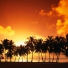 aitutaki island at sunset cook islands,nature landscape Wallpapers, nature landscape Wallpaper for Desktop, PC, Laptop. nature landscape Wallpapers HD Wallpapers, High Definition Quality Wallpapers of nature landscape Wallpapers.