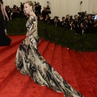Amanda Seyfried Met Gala Ball 2013 Wallpaper Wallpapers