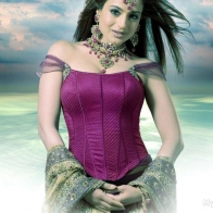 Amisha Patel Hd Wallpapers
