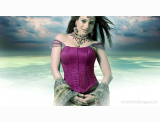 Amisha patel hd wallpapers hd wallpapers for Amisha indian cuisine