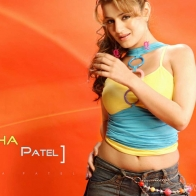 Amisha Patel Hot Hd Wallpapers