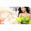 Amrita Rao Wallpapers Hd Free