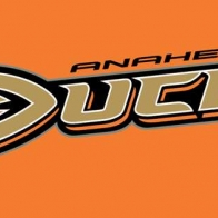 Anaheim Ducks Cover