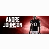 Andre Johnson Cover