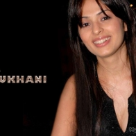 Anjana Sukhani Hd Wallpapers
