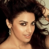 anushka ranjan, anushka ranjan  Wallpaper download for Desktop, PC, Laptop. anushka ranjan HD Wallpapers, High Definition Quality Wallpapers of anushka ranjan.