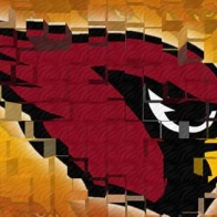 Arizona Cardinals Cover