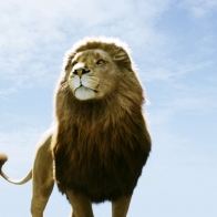 Aslan In Narnia Dawn Treader Wallpapers