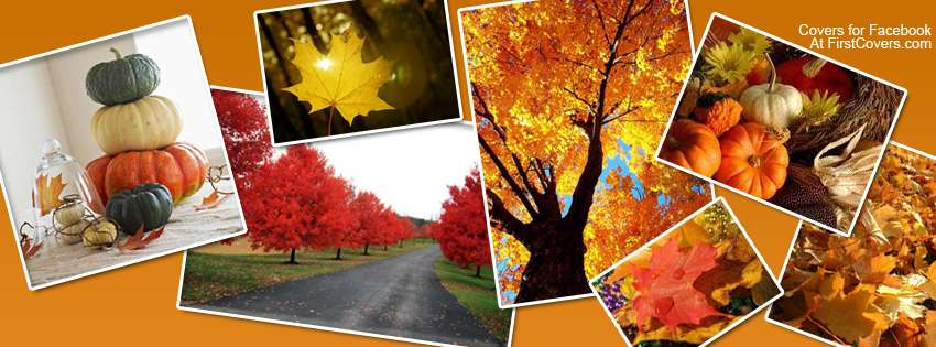 Autumn Collage Cover Hd Wallpapers