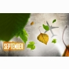 Autumn September Sky Wallpapers