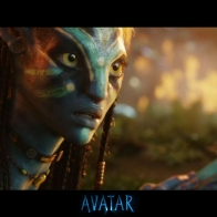 Avatar 41 Wallpaper