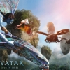 Download avatar international poster wallpapers, avatar international poster wallpapers Free Wallpaper download for Desktop, PC, Laptop. avatar international poster wallpapers HD Wallpapers, High Definition Quality Wallpapers of avatar international poster wallpapers.