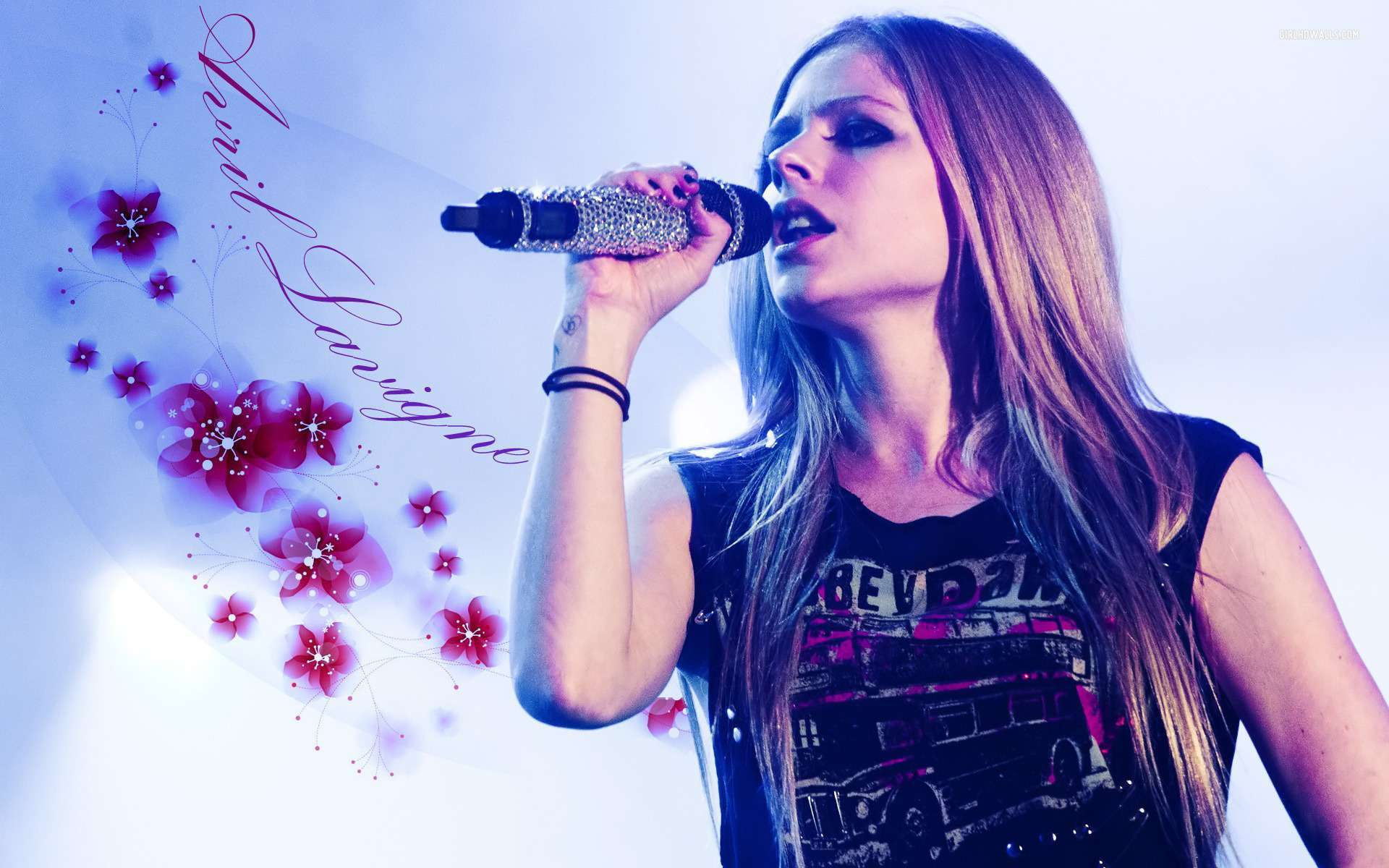 avril lavigne 34 wallpapers hd wallpapers