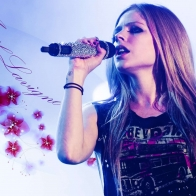 Avril Lavigne 34 Wallpapers