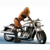 Babe On Harley Davidson Wallpaper