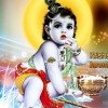 Download baby krishna, baby krishna  Wallpaper download for Desktop, PC, Laptop. baby krishna HD Wallpapers, High Definition Quality Wallpapers of baby krishna.