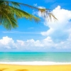 Download beach cover, beach cover  Wallpaper download for Desktop, PC, Laptop. beach cover HD Wallpapers, High Definition Quality Wallpapers of beach cover.