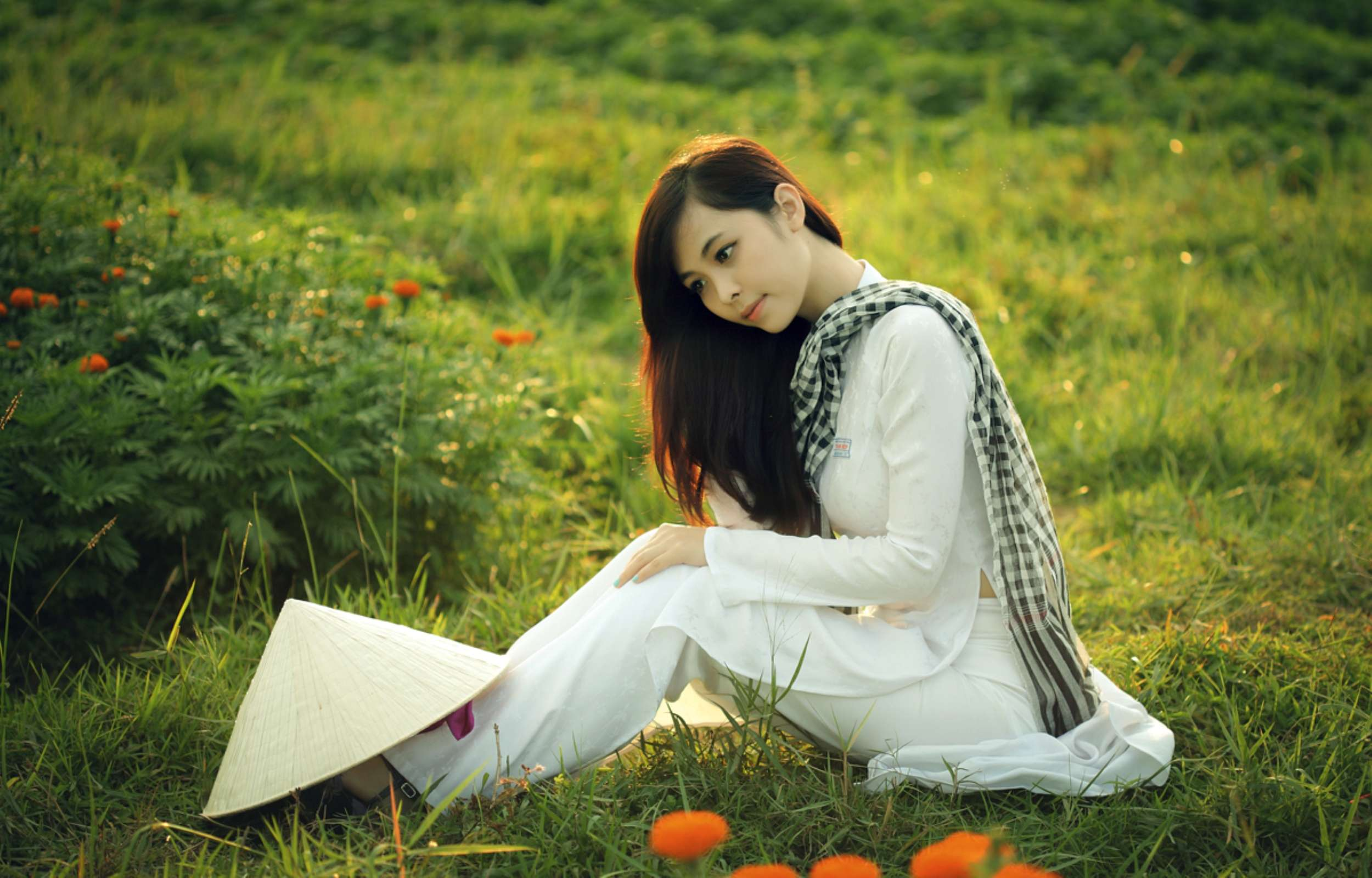Beautiful Girl Sitting In A Field Wallpapers : Hd Wallpapers