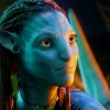 Download beautiful neytiri in avatar wallpapers, beautiful neytiri in avatar wallpapers Free Wallpaper download for Desktop, PC, Laptop. beautiful neytiri in avatar wallpapers HD Wallpapers, High Definition Quality Wallpapers of beautiful neytiri in avatar wallpapers.