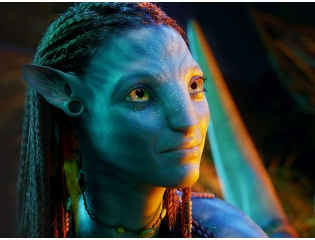 Beautiful Neytiri In Avatar Wallpapers