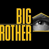 Big Brother Cover