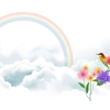 bird and rainbow,nature landscape Wallpapers, nature landscape Wallpaper for Desktop, PC, Laptop. nature landscape Wallpapers HD Wallpapers, High Definition Quality Wallpapers of nature landscape Wallpapers.