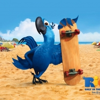 Blu In Rio Movie Wallpapers