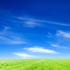 Download blue sky and green grass wallpapers, blue sky and green grass wallpapers Free Wallpaper download for Desktop, PC, Laptop. blue sky and green grass wallpapers HD Wallpapers, High Definition Quality Wallpapers of blue sky and green grass wallpapers.