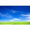 Blue Sky And Green Grass Wallpapers