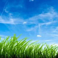 Blue Sky Green Grass Wallpapers
